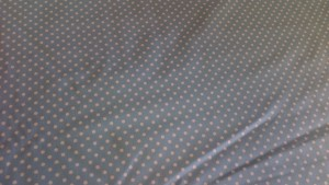 Blue + White Cotton Polka Dot 'Delilah' Fat Quarter